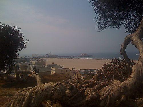 Calif vacation 708 010
