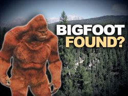 Found bigfoot