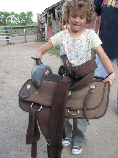 Horseback Riding 809 041