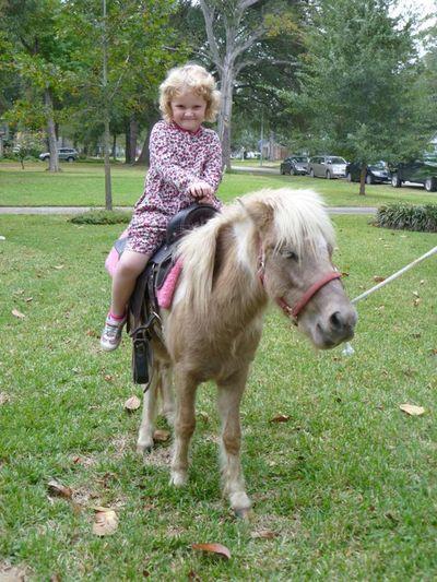 Carrie pony bday 1110